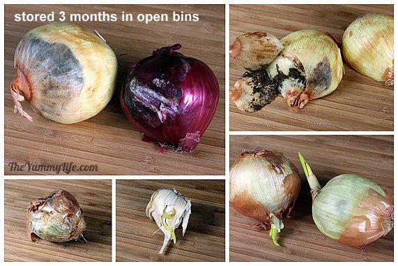 Cómo almacenar cebollas, ajo y chalotas 2
