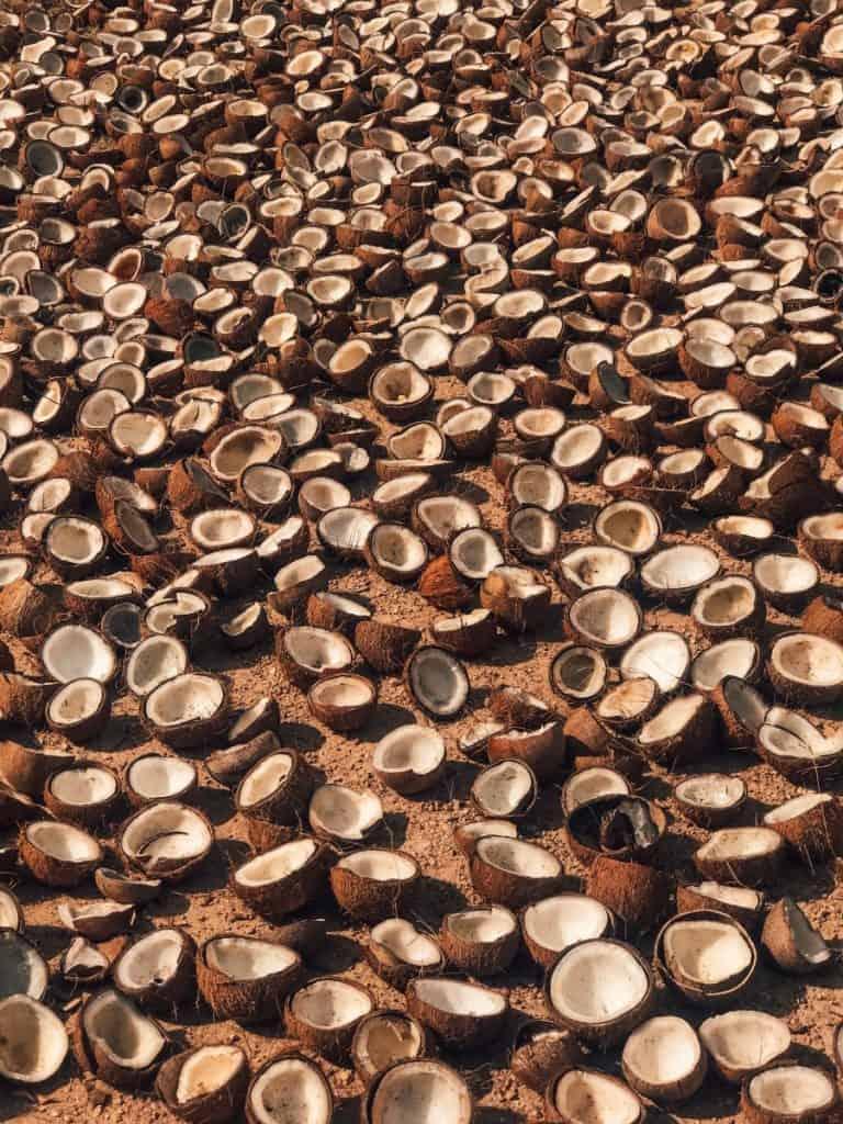 como se hace la harina de coco