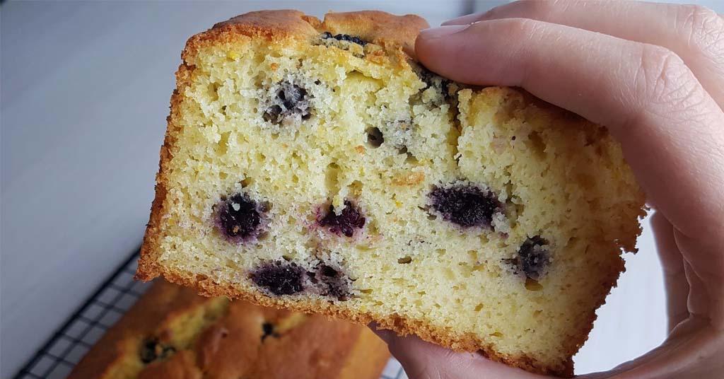 bizcocho-mora-torta