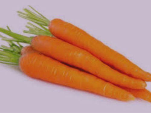 zanahoria y sus propiedades