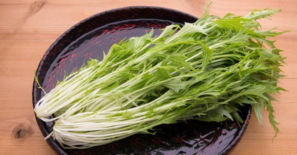 Ensalada Mizuno siguiendo la receta japonesa